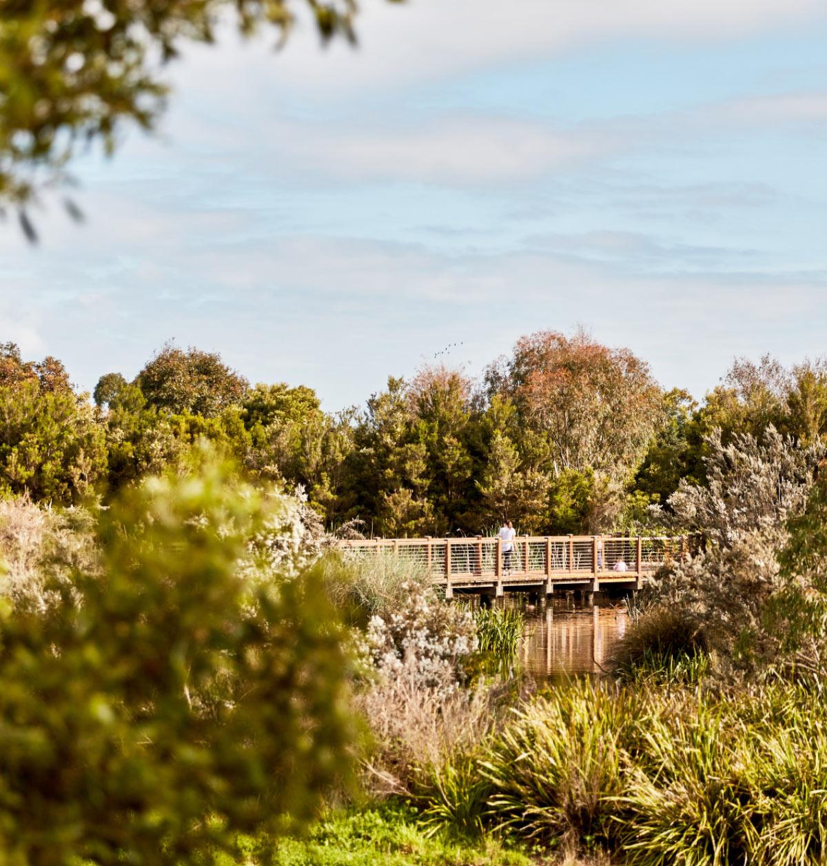Botanic Ridge Wetlands